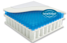 IntelliGel